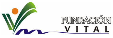 Logo fundacion vital